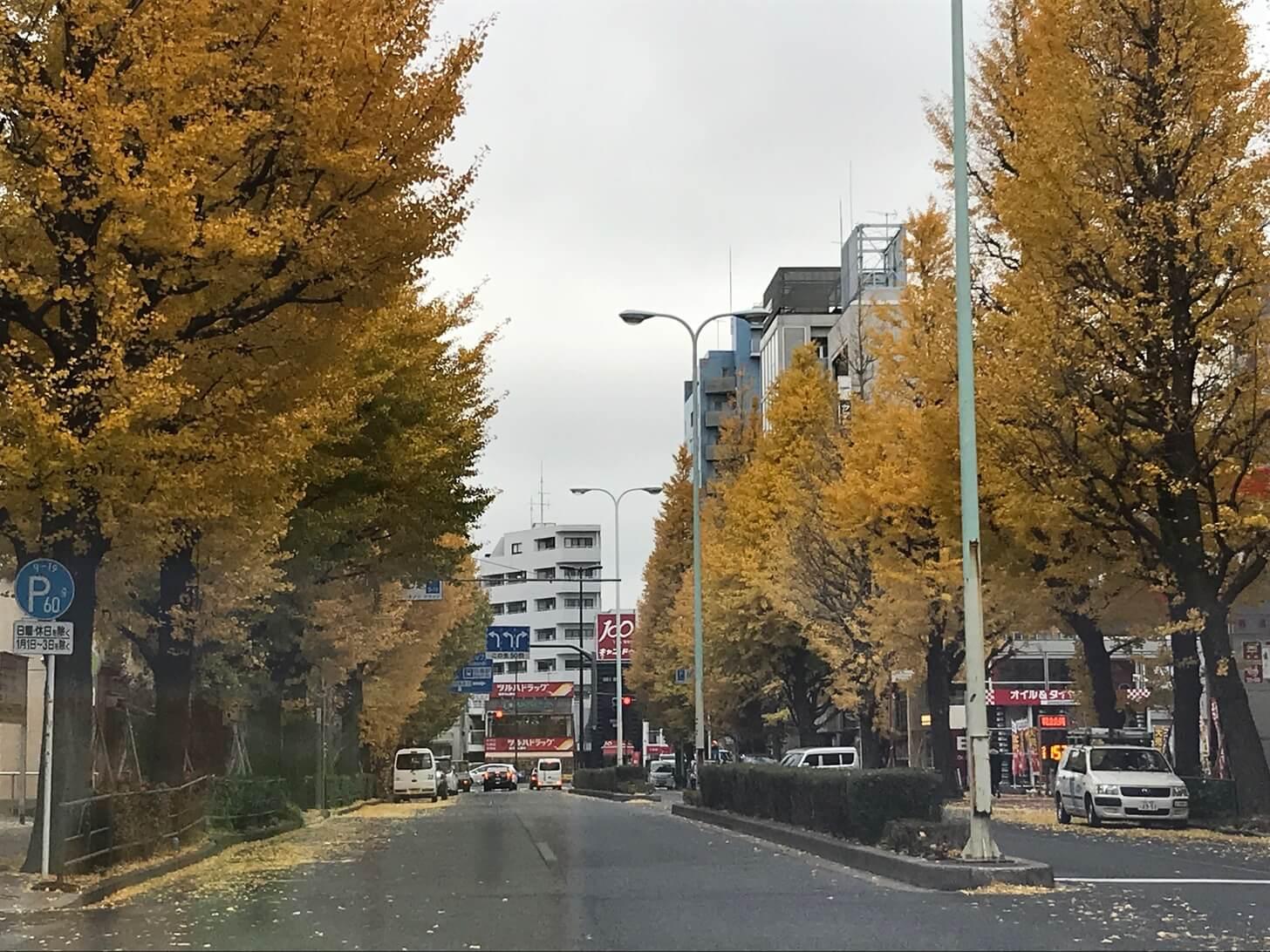 タクシードライバーの最大の敵は渋滞かもしれない【2017/12/01(金)の乗務記録】